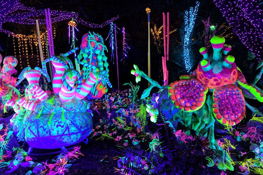 A view of magical creations on display at the Houston Zoo
