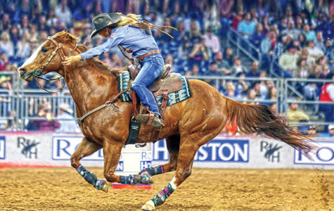 It's Rodeo Time Again!