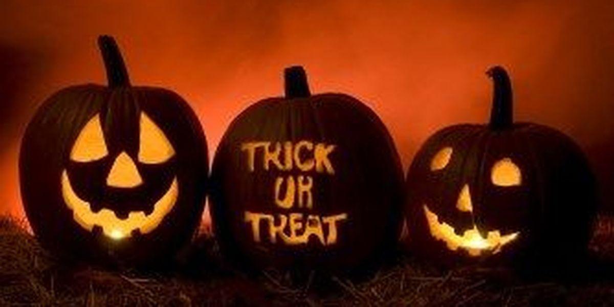 https://www.wdam.com/2018/10/29/list-halloween-trick-or-treat-times-events-pine-belt/