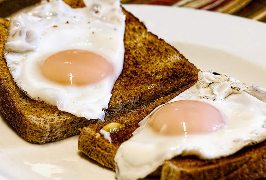Fried+egg+on+toast.